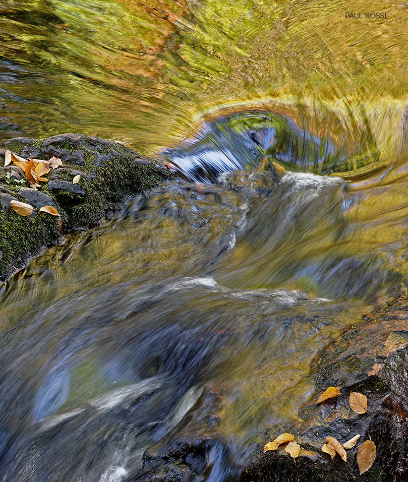 This image has an empty alt attribute; its file name is golden-river-detail.jpg