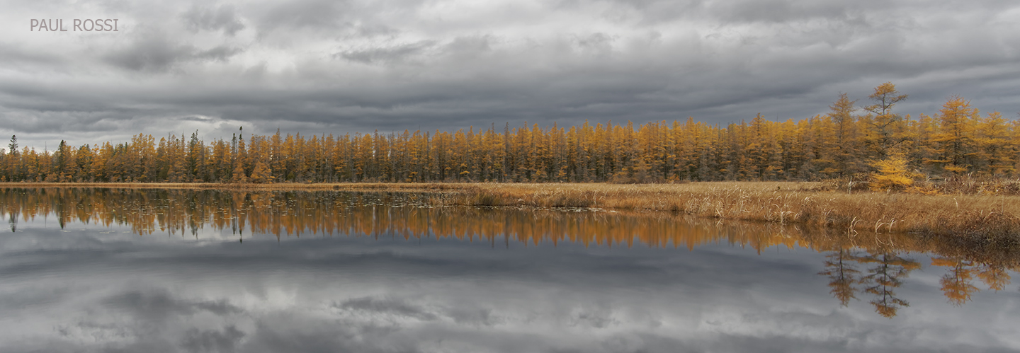 This image has an empty alt attribute; its file name is loon-lake-long-pano.jpg